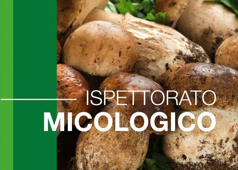 Alta Rezia News – Andar per funghi in sicurezza, l'ATS della Montagna attiva il servizio di Ispettorato Micologico